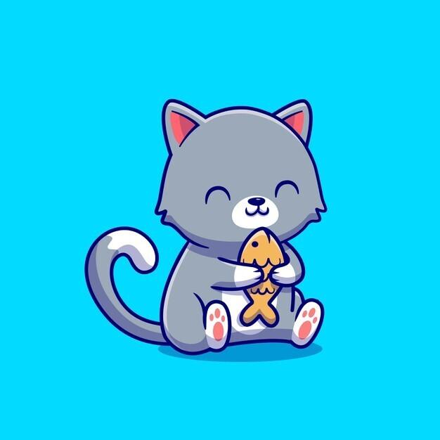 assurances et guides pour chat